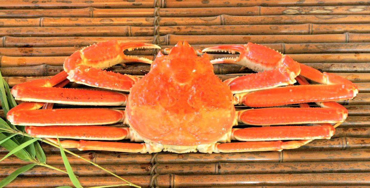 食材-楚蟹(ずわいがに)