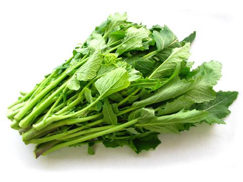 食材-油菜花(菜の花 なのはな)