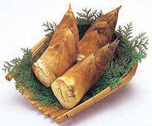 食材-竹笋(筍 たけのこ)